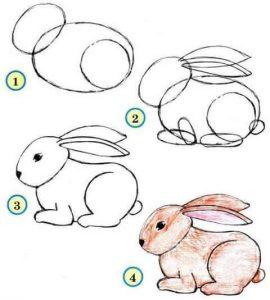adım adım tavşan çizimi