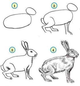 adım adım tavşan çizimleri
