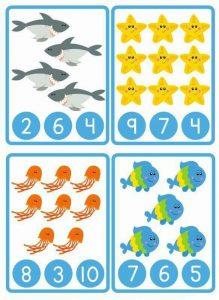 deniz sayı kartı
