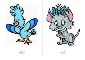 ingilizce hayvan kartları