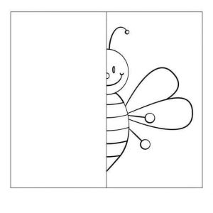 kelebek-simetri
