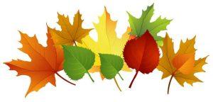 okuloncesi-sonbahar-mevsimi-ogretimi-sanat-etkinlikleri-5