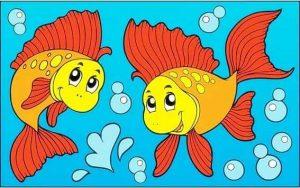 turuncu balık