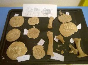 dinozor-sanat-etkinlikleri6