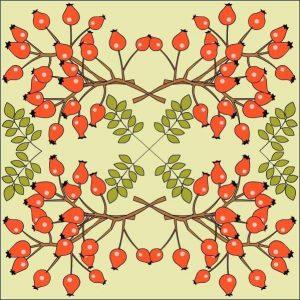 sonbahar-mandala-etkinligi4