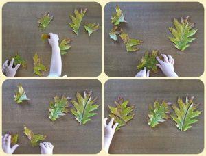 yaprak-sanat-etkinligi