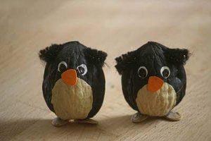 ceviz-kabugundan-penguen-etkinligi