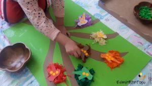 sayi-ve-renk-eslestirme-etkinligi-15