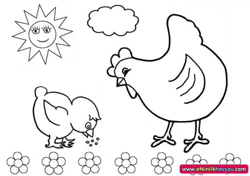 Tavuk Civciv Boyama Sayfaları Okul öncesi Boyama Sayfaları Evimin