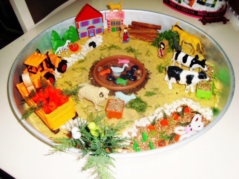 çiftlik_duyusalı