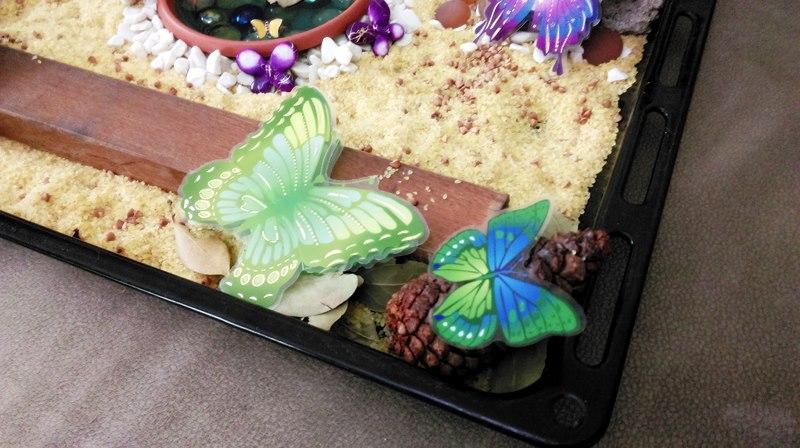 kelebek duyusalı örnek