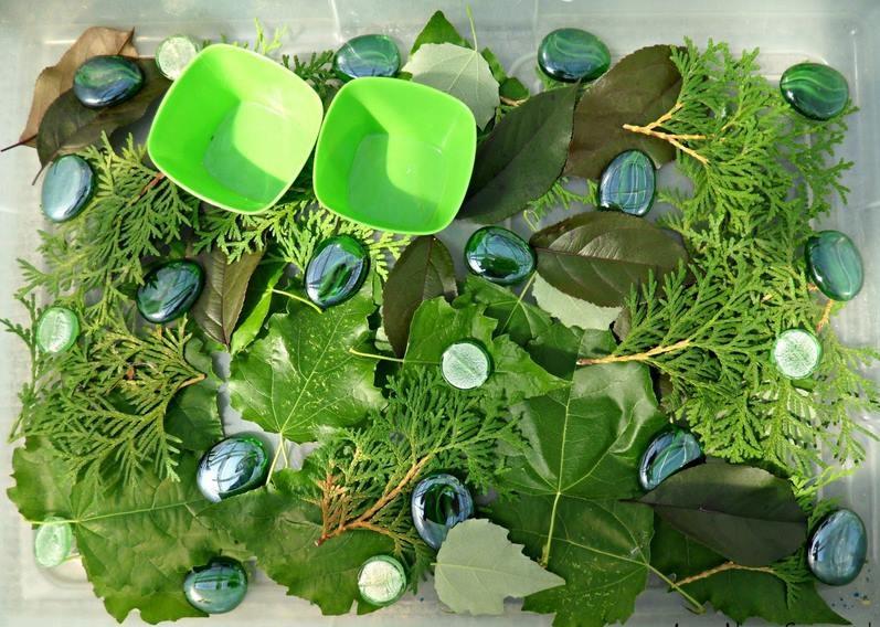 montessori_duyusal yeşil renk