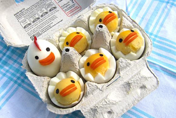 yumurtadan_civciv_yapımı