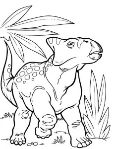 A-Genus-of-Ceratopsian-from-Late-Cretaceous-Period-in-Dinosaur-Coloring-Page (Kopyala)