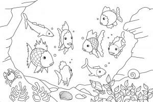 Fish-Coloring-Pages-Kids (Kopyala)