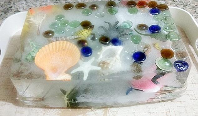 montessori deniz hayvanları duyusalı
