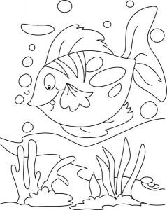 fish-coloring-page1 (Kopyala)