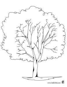 plane-tree-coloring-page-source_ywn