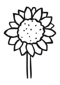 çiçekler_harika_boyama