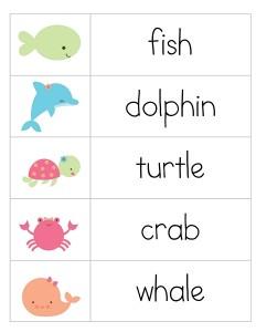 deniz_hayvanları_kelimelerr