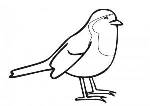 kuş_boyama2
