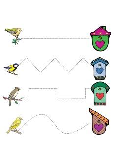 kuşlar_çizgi_çalışması