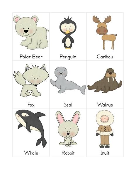 Kutup Hayvanlari Etkinlikleri Okul Oncesi Kutup Temasi