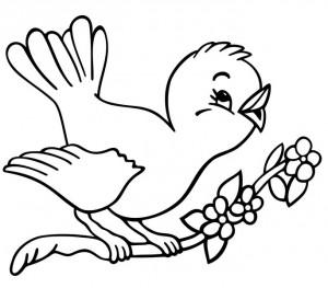 okul_öncesi_eğlenceli_kuş_boyama_sayfaları