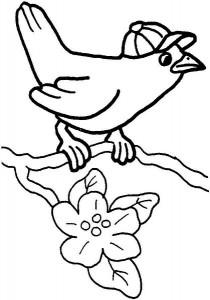 okul_öncesi_harika_kuş_boyama_sayfaları