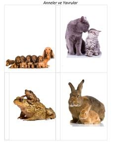 yavru_hayvanlar_dörtlü_puzzle