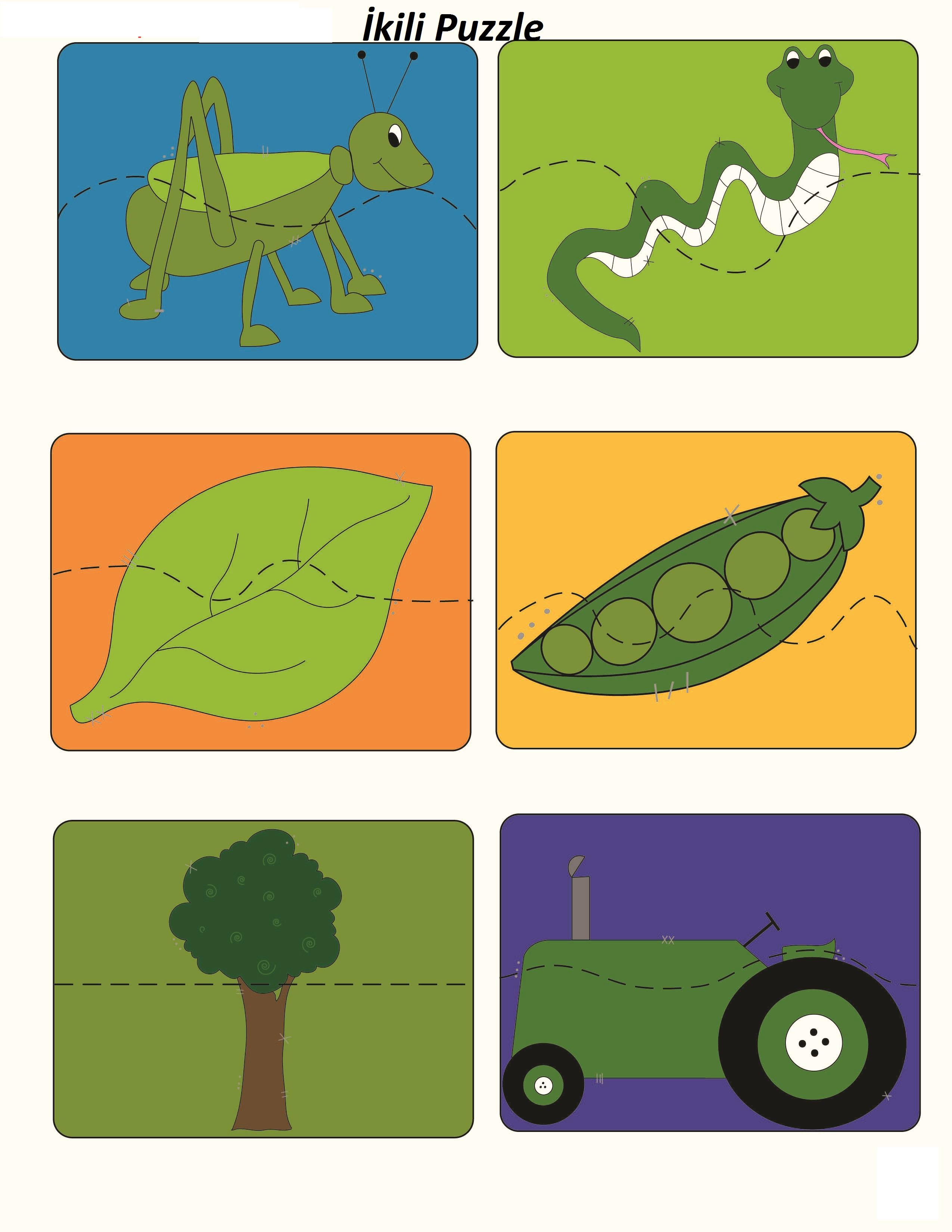 Photo of Yeşil Rengi Öğretim Etkinlikleri