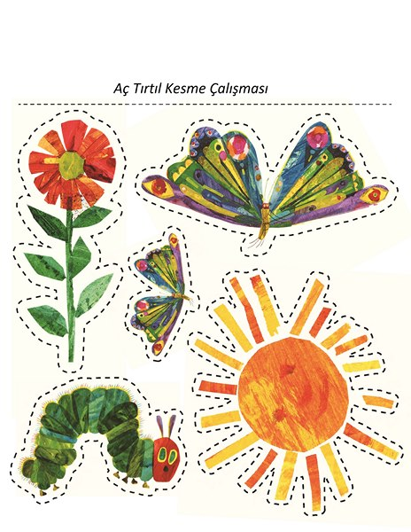 Ac Tirtil Kitabi Aktiviteleri Okul Oncesi Kitap Etkinlikleri