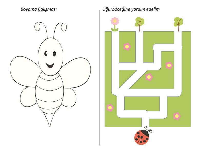 Arı Ve Uğur Böceği Sayfaları Evimin Altın Topu