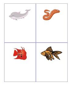 deniz_hayvanları