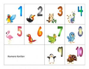kuşlarla_numaralar