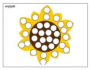 okul_öncesi_noktacıklı_ayçiçeği