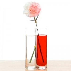 renkli_çiçek_deneyi