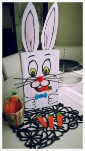 tavşana_havuç_yedirme