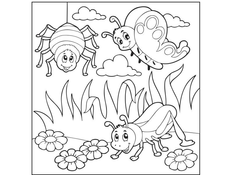 Uğurböceği Boyama Sayfaları Harika Uğurböceği Boyamaları Evimin