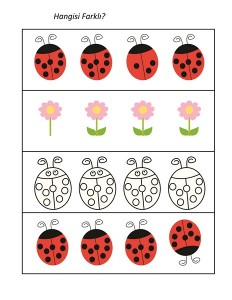 uğurböceği_hangisi_farklı