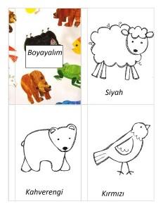 koyun_ayı