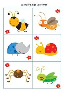 okul_öncesi_böcek_gölge_eşleştirme