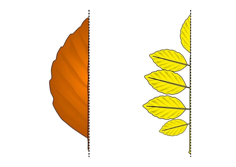 Photo of Yapraklar Simetri Çalışması