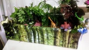 montessori_forest_activities