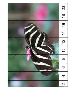 okul_öncesi_kelebek_puzzle