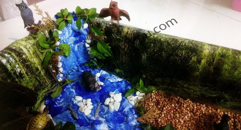 orman_duyusalı