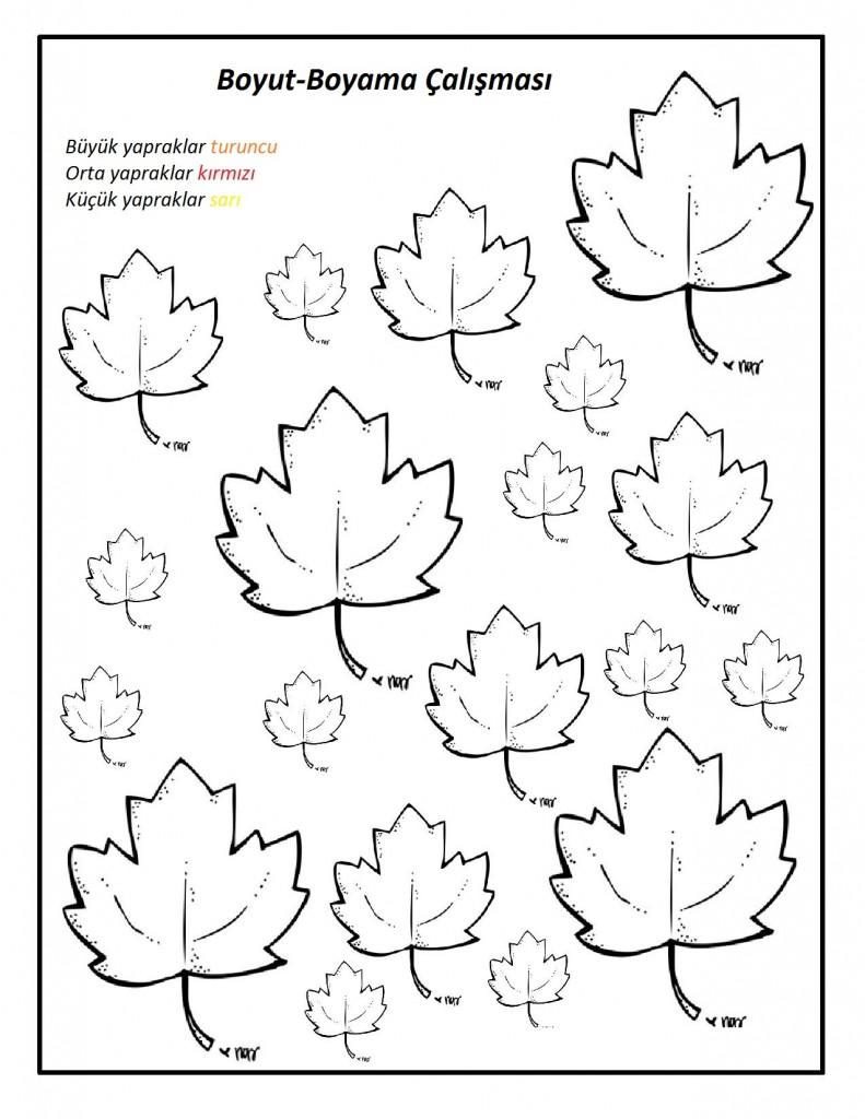 Yapraklarla Matematik Etkinlikleri Matematik çalışma Sayfaları