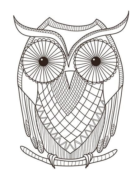 Baykuş Boyama Sayfası Gazetesujin