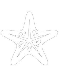 .boyama_kumsal_deniz_yıldızı