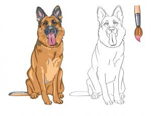 boyama_kurt_köpeği